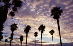 Kalifornien-Himmel-Sonnenuntergang Lizenzfreie Stockbilder