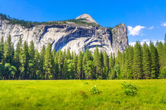 Kalifornien 2007 januari nationalpark tagna USA yosemite Royaltyfri Bild