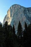 Kalifornien 2007 januari nationalpark tagna USA yosemite Arkivbilder