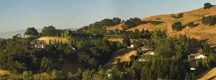 Kalifornien kullar Fotografering för Bildbyråer