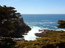 Kalifornien kust- klippor med träd som ner växer på kanten - ingen huvudväg för vägtur 1 royaltyfri foto