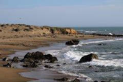 Kalifornien kustlinje Royaltyfria Foton