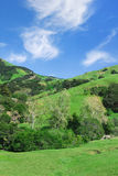 Kalifornien-Landschaft stockbild