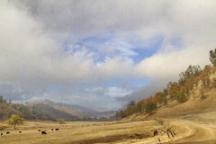 Kalifornien landskap Royaltyfri Fotografi