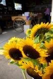 Kalifornien: lantgårdställningen shoppar solrosor Arkivbilder