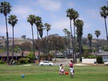 Kalifornien liv royaltyfri bild