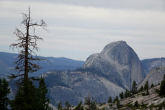 Kalifornien nationalpark yosemite Arkivbilder