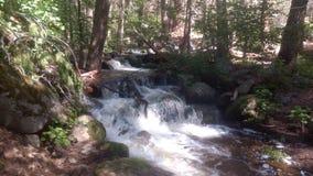 Kalifornien-Nebenfluss Stockbild