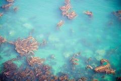 Kalifornien-Ozean Lizenzfreies Stockbild