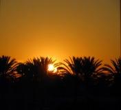 Kalifornien soluppgång Arkivfoto