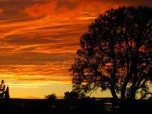 Kalifornien sydlig solnedgång Fotografering för Bildbyråer