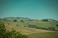 Kalifornien vinland royaltyfri bild