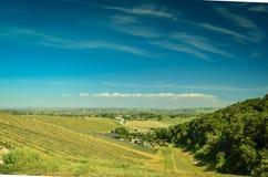 Kalifornien vinland arkivbild