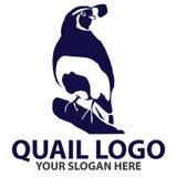 Kalifornien-Wachteln Logo Template Lizenzfreie Stockfotos