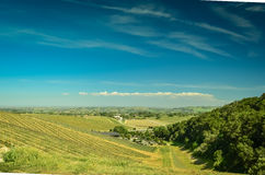 Kalifornien-Weinanbaugebiet stockfotografie