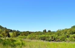 Kalifornien-Weinanbaugebiet schönes Sonoma Stockbilder