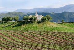 Kalifornien-Weinkellerei stockbilder