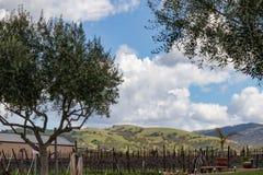 Kalifornien-Weinkellerei nahe Livermore stockbilder