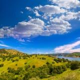 Kalifornien-Wiesenhügel und -see in einem blauen Himmel entspringen Lizenzfreie Stockfotografie