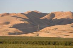 Kalifornii 3 pól uprawnych Zdjęcie Royalty Free