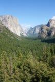Kalifornii 2007 Stycznia parki narodowe usa do Yosemite Zdjęcia Stock