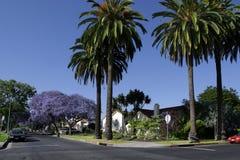 kalifornijczyk własności Zdjęcia Stock