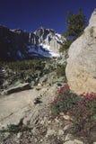 kalifornijskie mount trace wędrownej Obraz Royalty Free