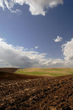 kalifornijskie ziemi rolnej Zdjęcia Stock