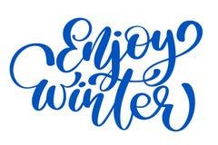 Kaligrafia cieszy się zimy Wesoło kartkę bożonarodzeniowa z Szablon dla powitań, gratulacje, parapetówa plakaty ilustracji
