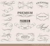 Kaligraficzni projektów elementy Obrazy Stock