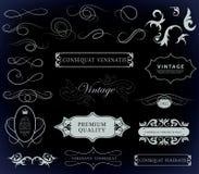 Kaligraficzni projektów elementy Obraz Stock