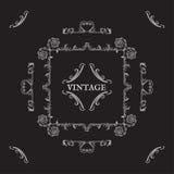 Kaligraficzni roczników elementy Ornamenty i rama, retro styl Zdjęcia Stock