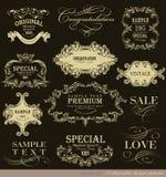 kaligraficzny projektów elementów wektora obrazu Obraz Stock