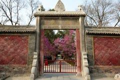 Kaligrafii sztuka w Xian beilin muzeum obrazy stock