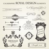 Kaligraphic elementy Obraz Stock
