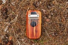 Kalimba africain traditionnel d'instrument de musique sur un fond des aiguilles et des cônes dans une forêt images stock