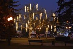 Kaliningrad, Ρωσία Το λάμποντας δέντρο στο τετράγωνο Στοκ Φωτογραφίες