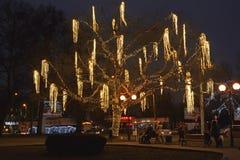 Kaliningrad, Ρωσία Το λάμποντας δέντρο τετραγωνικό αργά το βράδυ Στοκ Εικόνες