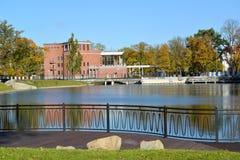Kaliningrad Argine del lago grain (galleggiante dello stagno) nel fa Fotografie Stock Libere da Diritti