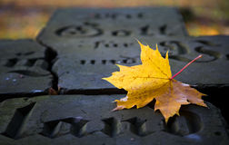 Kaliningrad, autumn, cemetery for victims of the Second World Wa Stock Photo