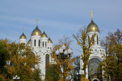 Kaliningrad. Cathedral of Christ the Saviour and Saint Pyotr Stock Photography