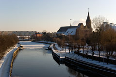 Kaliningrad-Kathedrale im Winter Stockfoto