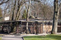 KALININGRAD, RÚSSIA - 29 DE MARÇO DE 2014: Gaiolas para pássaros no jardim zoológico de Kaliningrad fotos de stock royalty free