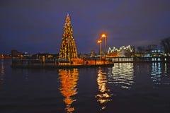 Kaliningrad, Rosja Odgórny jezioro z nowego roku drzewem na wodzie Obraz Stock