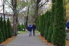 Kaliningrad, Rusland - november 18,2018: De mensen die in stad lopen parkeren stock afbeeldingen