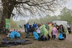 Kaliningrad Ryssland - Maj 18, 2019: Ekologisk h?ndelse p? kusten f?r baltiskt hav, reng?rande shoreline f?r folk fr?n avskr?de fotografering för bildbyråer