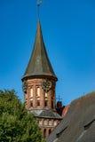 Kaliningrad tornet av domkyrkan namngav Kan royaltyfri fotografi