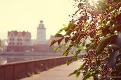Kaliningrad ulicy ranek Obrazy Stock