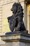 Kaliningrad, vintage lion statue Royalty Free Stock Photos