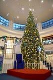 Kaliningrado, Rusia Un árbol grande del Año Nuevo en centro comercial Fotos de archivo
